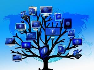 tree-426061_640